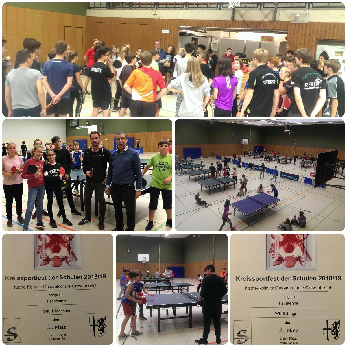 Licht und Schatten beim diesjährigen Kreisfinale im Tischtennis
